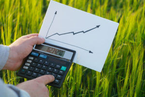 The farmer calculates his profit by calculating the calculator